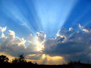 sunlight- 579